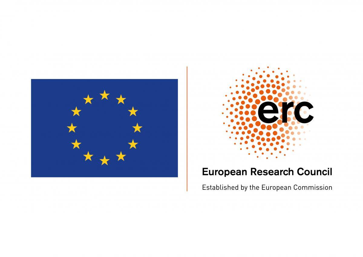 European Research Council Consolidator Award