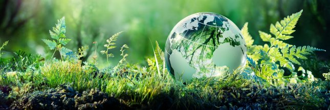 Sustainability for Investors